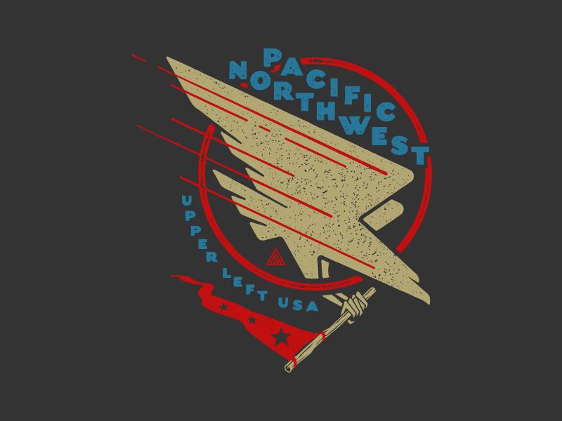 Pnw Eagle patriotic shirt eagle pnw