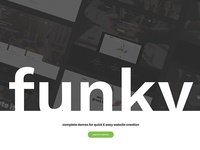 Funky - Professional Creative Template