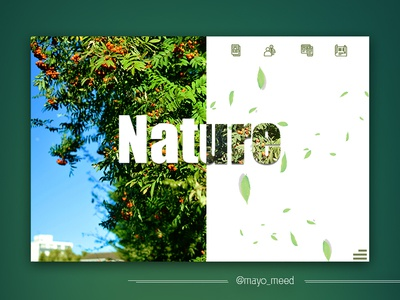 Nature Uiux nigeria barking london sky fruit red aina-badejo mayomide mayomeed photograhy flower nikon green nature ui  ux design ui  ux ux design ui