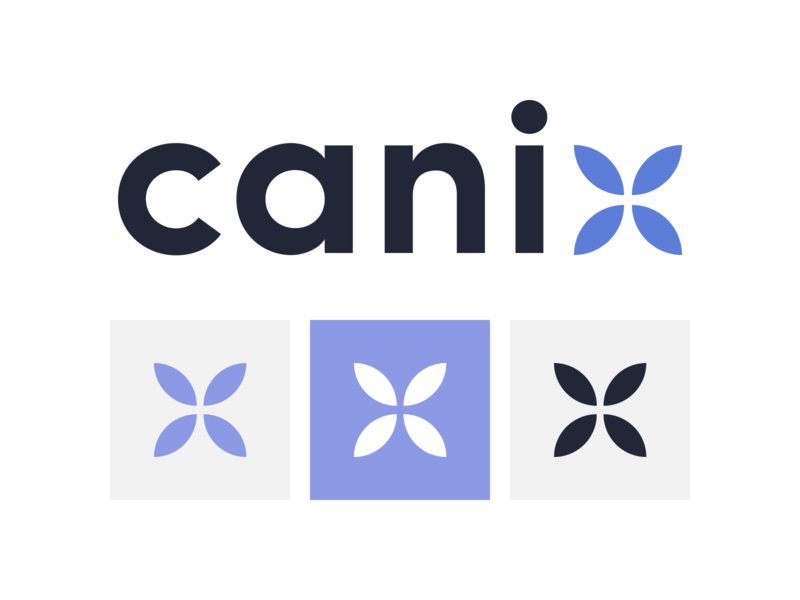 Canix typography mark branding logo illustration icon wlebovics