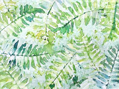 Dribbble ferns
