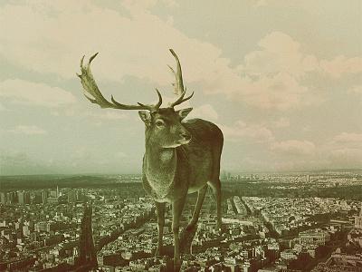 Marvin cd album cover illustration graphic design gigant animals