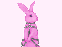 BDSM Rabbit