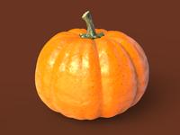 Pumpkin 1600