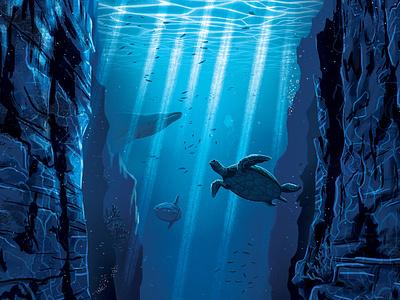 Oceans sunfish whale turtle ocean