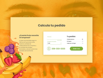 SrFruits - UI for mexican fruit delivery company