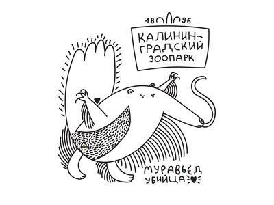 anteater killer