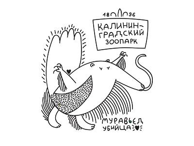 anteater killer vector illustration иллюстрация