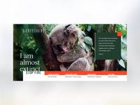 Disappearing: koala extinction campaign