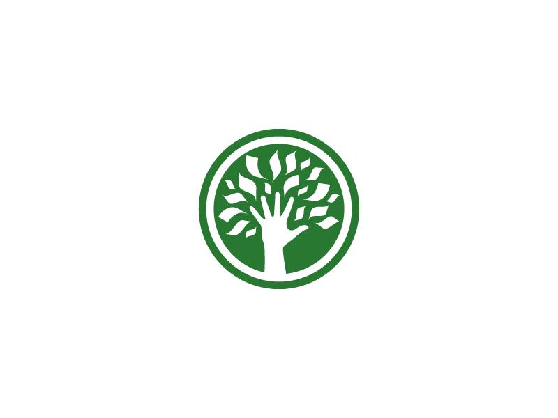 money tree logo by dizzyline dribbble