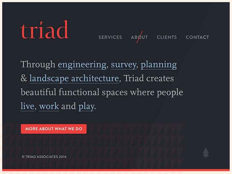 Triad site dribbble
