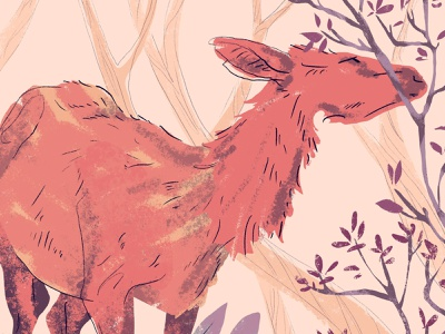 Deer wacom drawing graphic animal nature deer adobe photoshop illustration