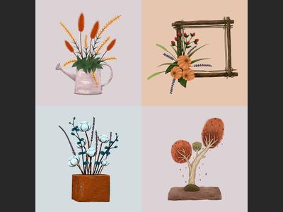植物插画练习