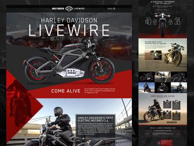 Harley Davidson Livewire Motorcycle