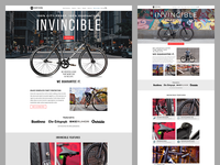 Fortified Bikes Invincible