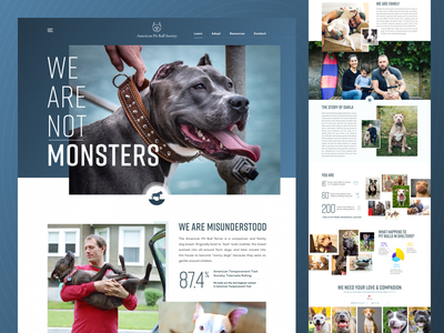 APBS Homepage clean grid texture dog rescue pit bull rescue dog landing page typography homepage