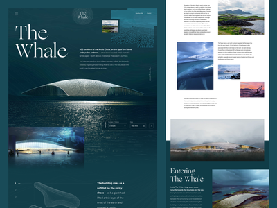 The Whale Arctic Pavilion science aquatic wildlife minimal norway web design ui clean landing page website architecture museum whale