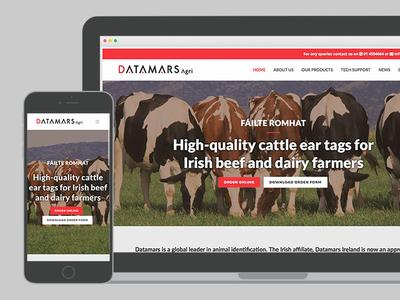 Datamars Feature Image