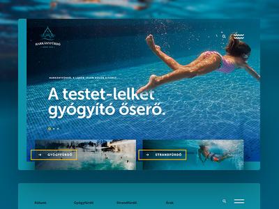 Harkany Spa website homepage webdesign marine blue minimal design ux frontpage layout website uidesign ui