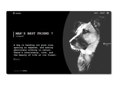 Doggo Ui design appdesgin webdeisgn dailyui