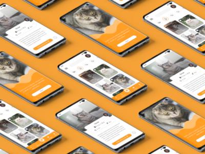 UI Design For Catty Mobile Application ui design adobe xd creative ios andriod ux ui app