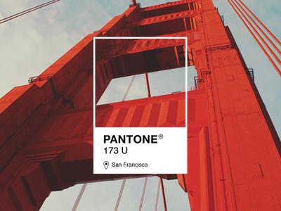 Pantone 173 U
