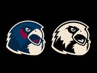 Falcon School Mascot Logo