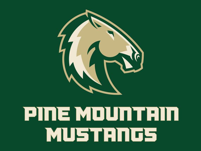 Pine Mountain Mustangs custom action athletic mascot brand school bronco horse illustration identity sports sport branding mustang
