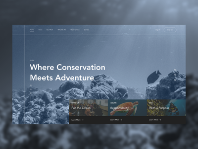 Project Aware Redesign ecology ocean webdesign redesign uxdesign homepage website design uidesign