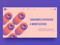 Consumer Experience website