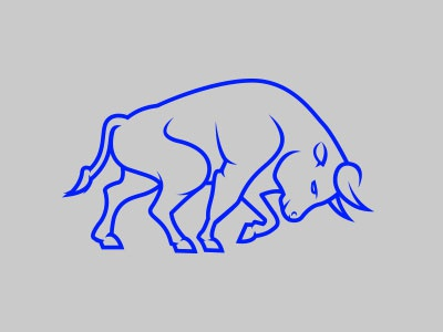 Bull bull blue grey illustration line drawing