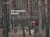 Crosscountry landing page