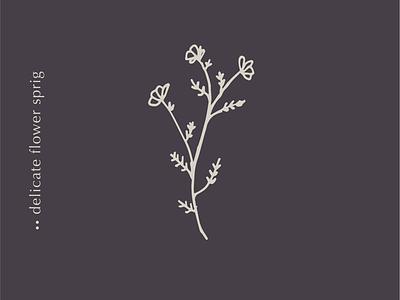 Quick Flower Sketch floral element illustration floral illustration flower art flower sketch