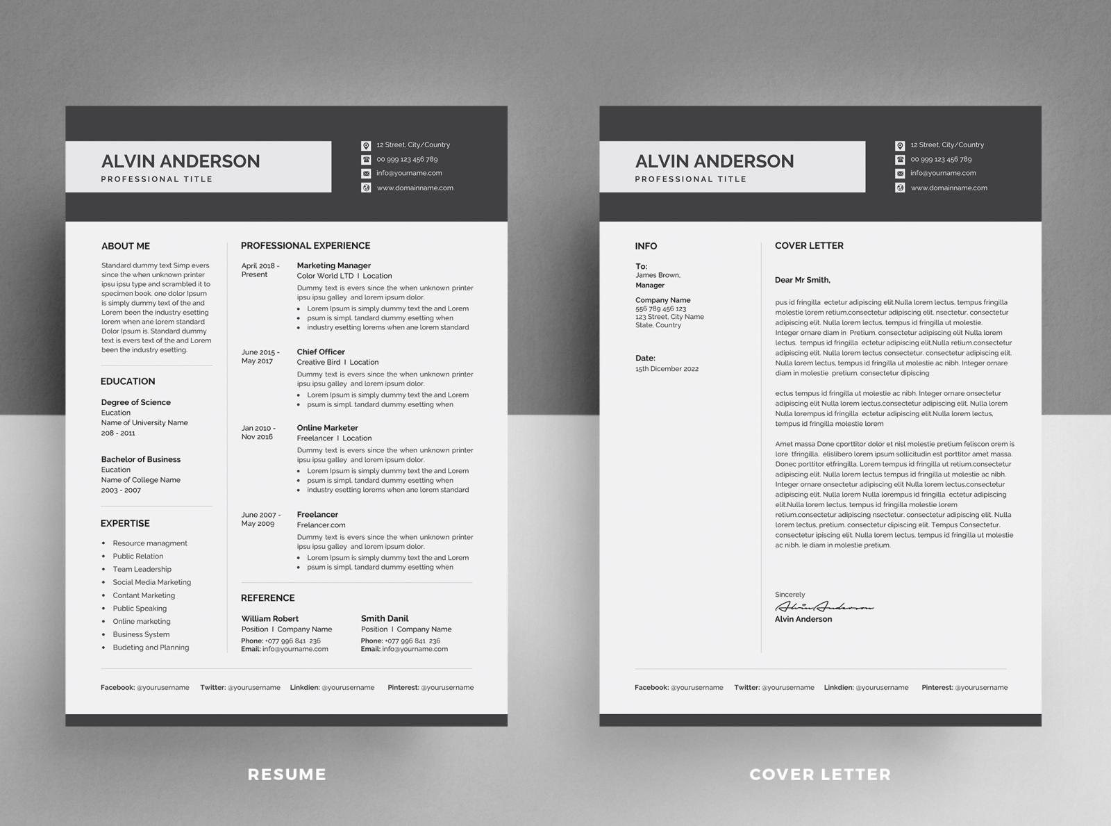 Resume Template Cv By Designsbird On Dribbble