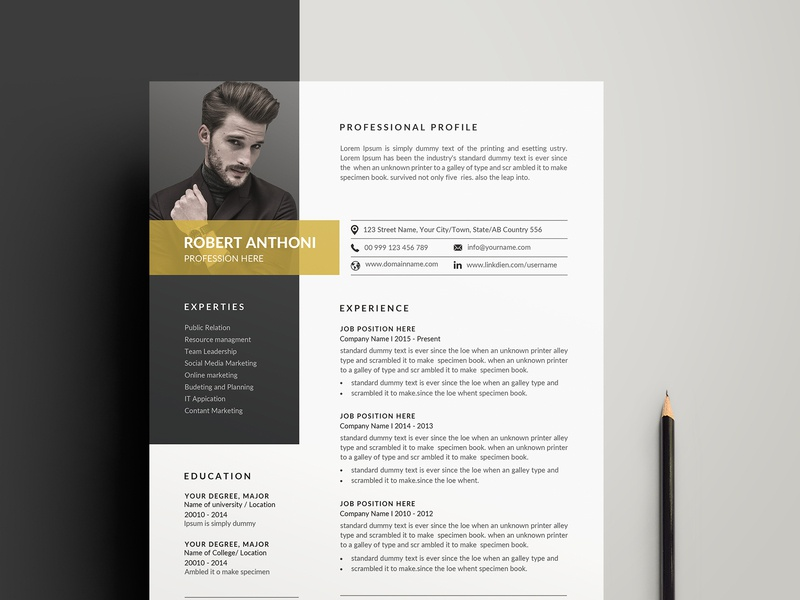 Clean Cv Resume By Designsbird On Dribbble