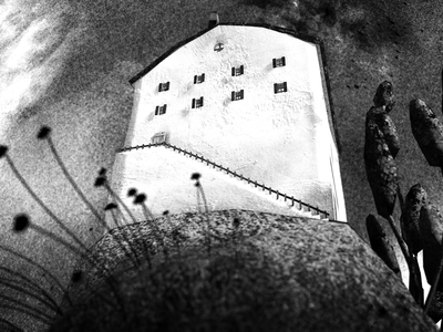 The house of Bluebeard grain dark white black ax wolf head blood horror hill house