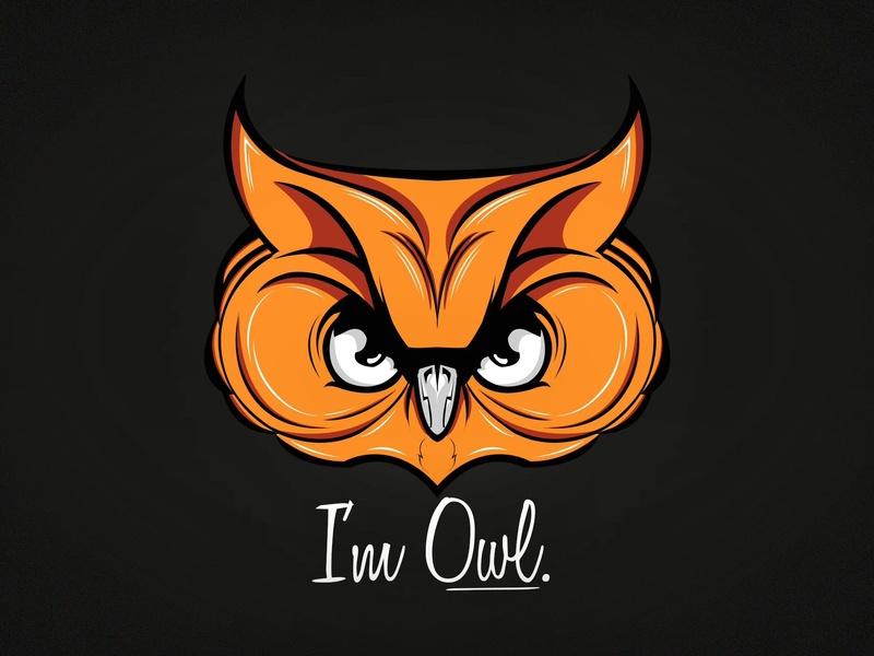I'm Owl Logo Design | Photoshop + Illustrator inspiration branding illustrator colors portfolio graphic design owl photoshop flat icon vector design logo illustration