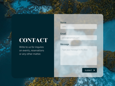Contact Us web form contact form dailyui 028 interface design user interface uidesign ui dailyui contact