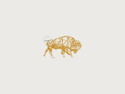 Brian the Bison bison buffalo physiotherapy vector logo design hand drawn illustration branding