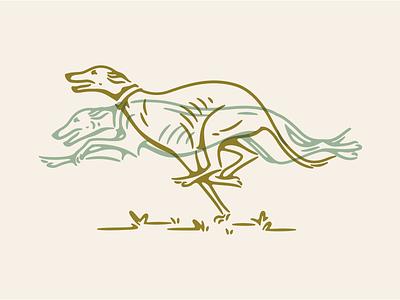 Greyhound Racer character overlay colorado springs colorado animal illustration dog racing dog illustration race track race greyhound