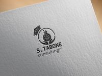 S. Tabone Consulting Inc Logo Design