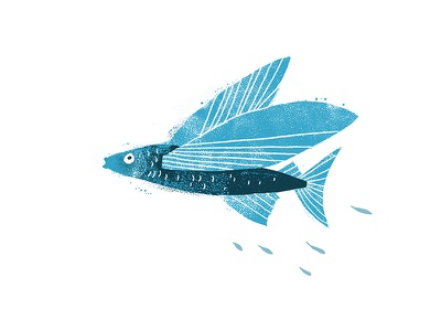Flying Fish texture grunge drawing illustration fish flying
