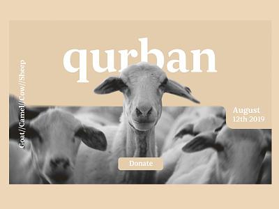 qurban web ui ios clean webdesign uidesign uxdesign web typography website ux uiux digital branding app flat design vector ui illustration