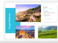 Travel Web Application Design & Development