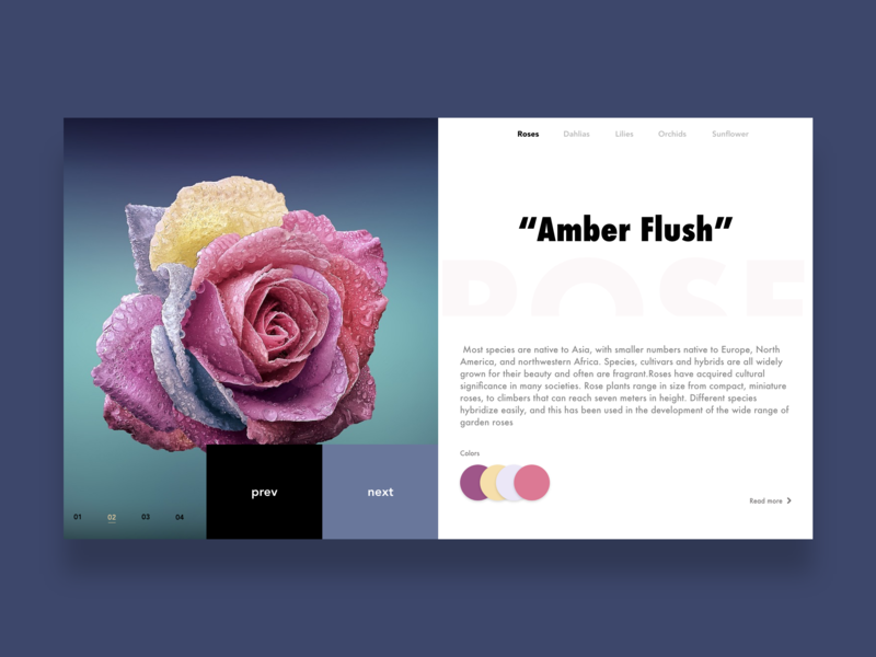 Flowers flowers about roses branding website web ux ui. design
