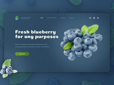 Blueberry blue berry berries blueberry web design ux ui design ui web design hero image
