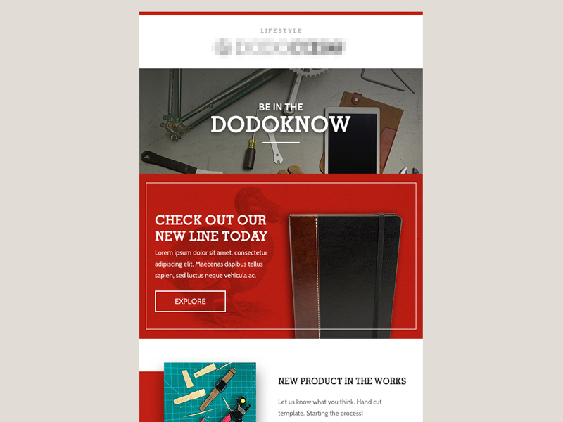 Newsletter Email Design enews email template email campaign email design eblast