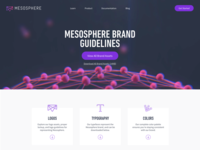 Mesosphere Brand Guidelines Concept