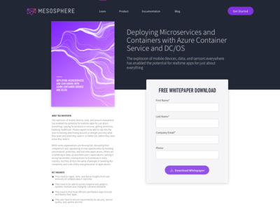 Mesosphere Resources Detail View tools typography web landing site resources mesosphere book