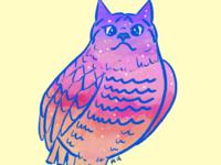 Galaxy Cat Owl